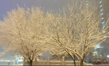 赵博文:2020年的第N场雪来的比以往更晚一些!