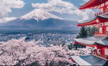 从日本消费社会的演变,窥见未来20年的中国