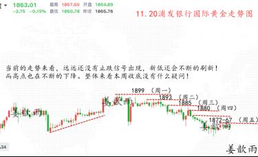 姜歆雨:不要对金银产生抄底的念头!金银TD趋势深度解析!