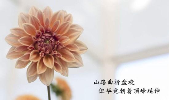asd_副本.jpg