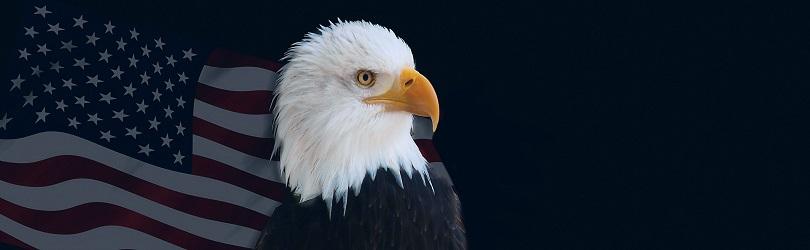 美联储会议纪要出炉:强调保持耐心,未讨论降息的可能性!
